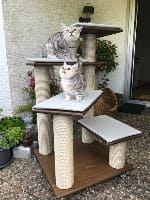 Ivy, Macy & Minka