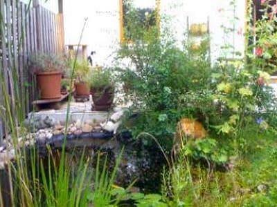 Ein Gartenteich