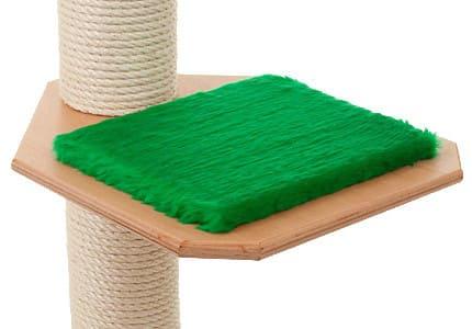 Buche-Plüsch-Tannengrün
