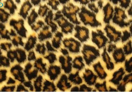Plüsch-Leopard