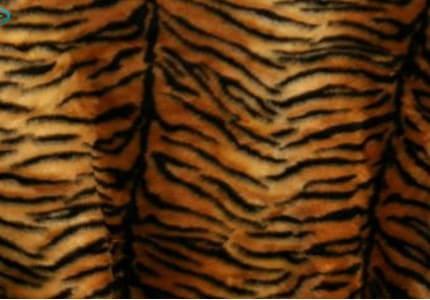 Plüsch-Tiger